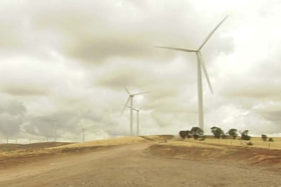 Just under half of South Australia's energy is generated by wind and solar.