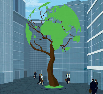 Sense in Sustainability: the Changing Focus for Boards