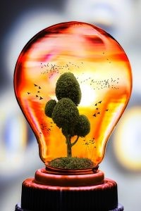 Sustainable Energy at Home: Tips and Tricks | Sustainability Australia